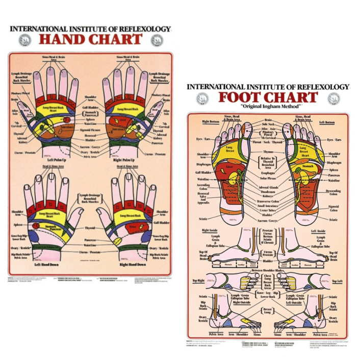 Hand or Foot Reflexology Charts - Your choice of our hand or foot chart