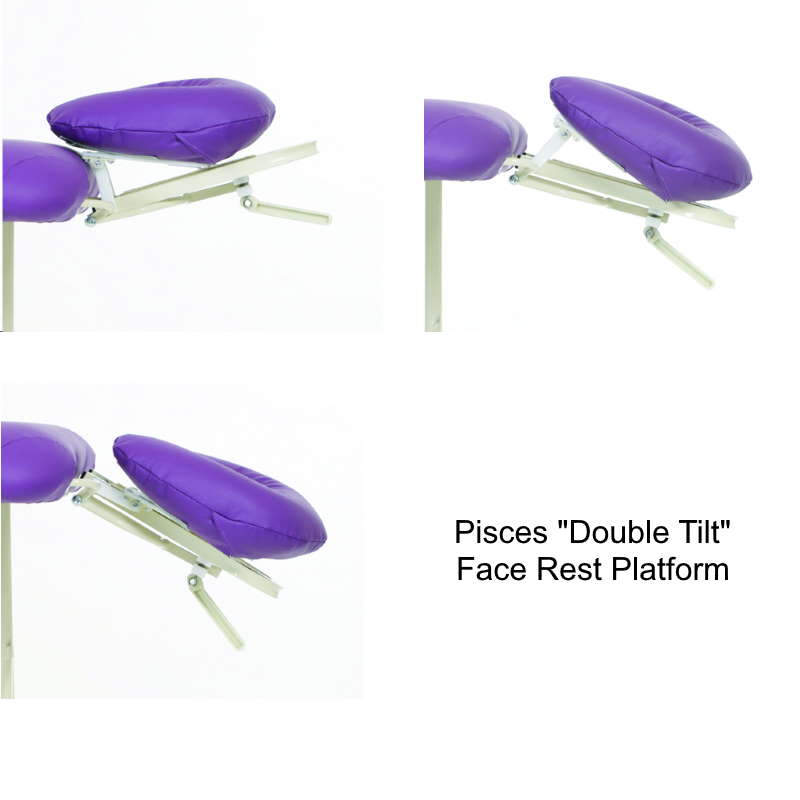 The Pisces Double-Tilt headrest adjusts in angle, position, and height.